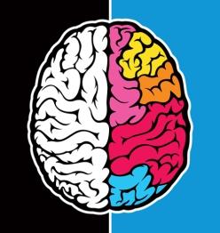right_brain_illustration3